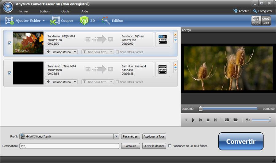 Capture d'écran AnyMP4 Convertisseur 4K