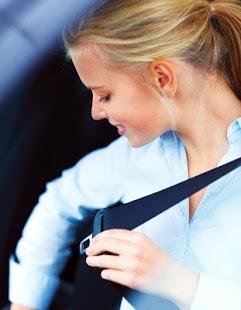 Capture d'écran Permis de Conduire