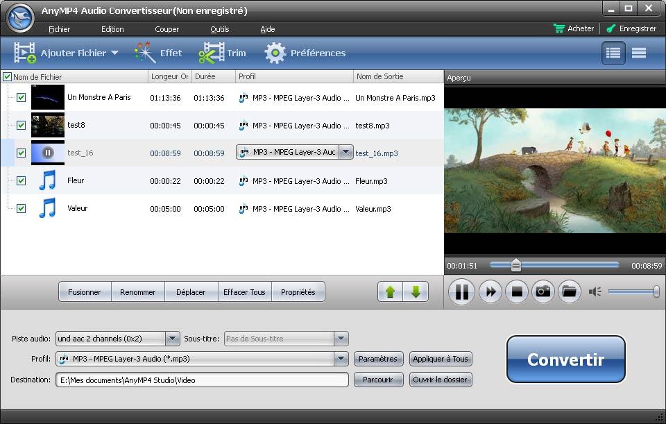 Capture d'écran AnyMP4 Audio Convertisseur