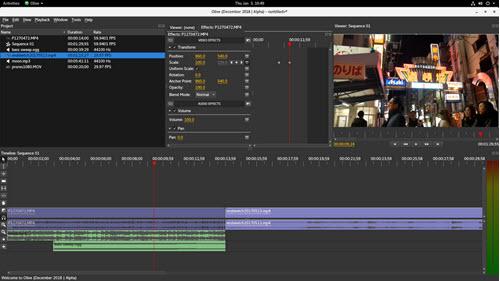 Capture d'écran Olive Video Editor