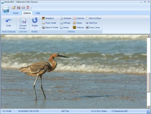 Capture d'écran Ultimate File Viewer
