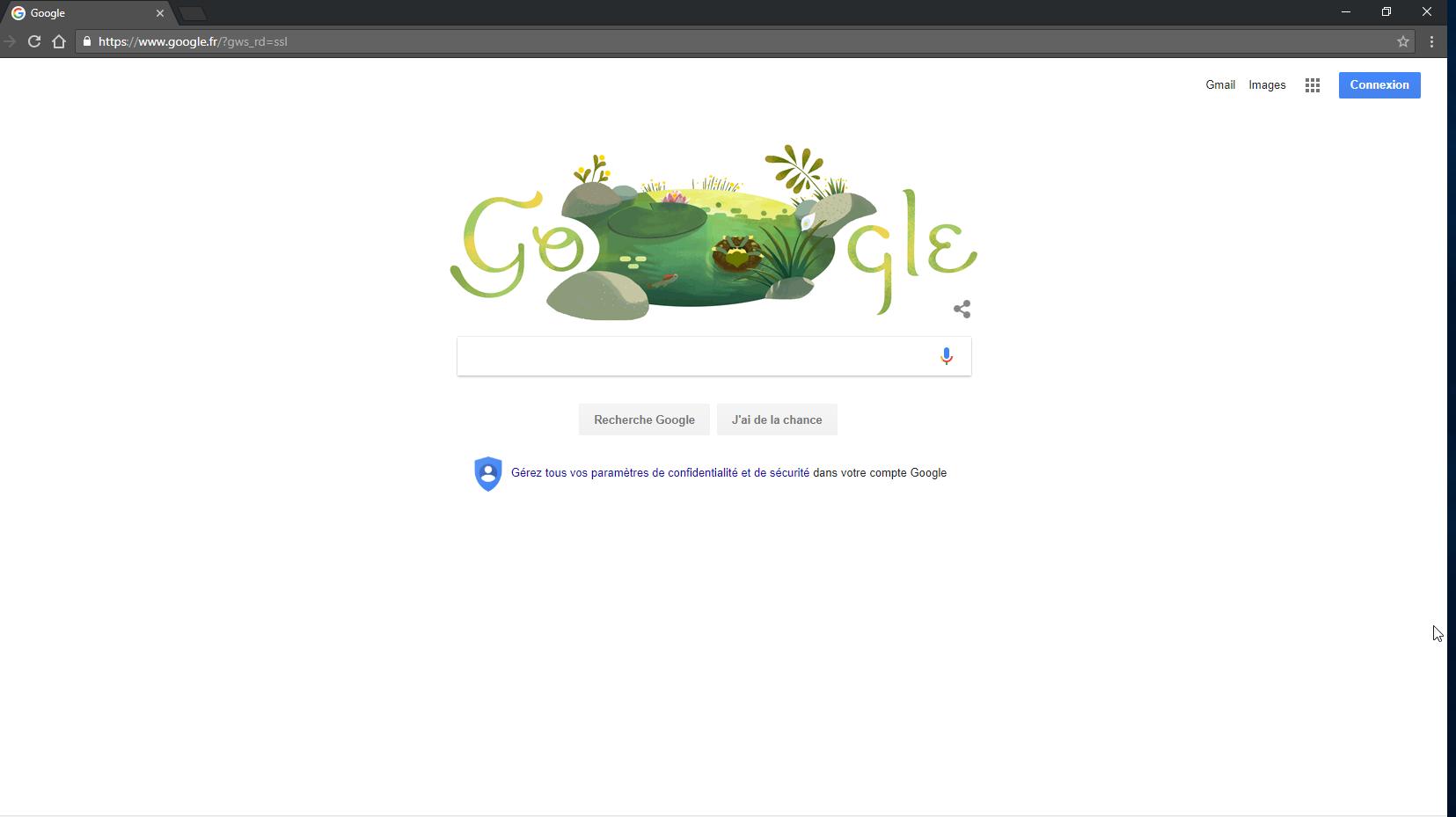 Capture d'écran Google Chrome Linux