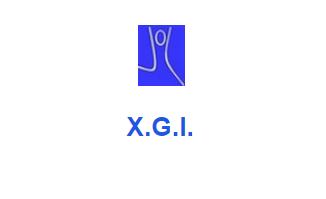 Capture d'écran XGI