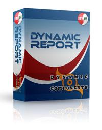 Capture d'écran DC Dynamic Report