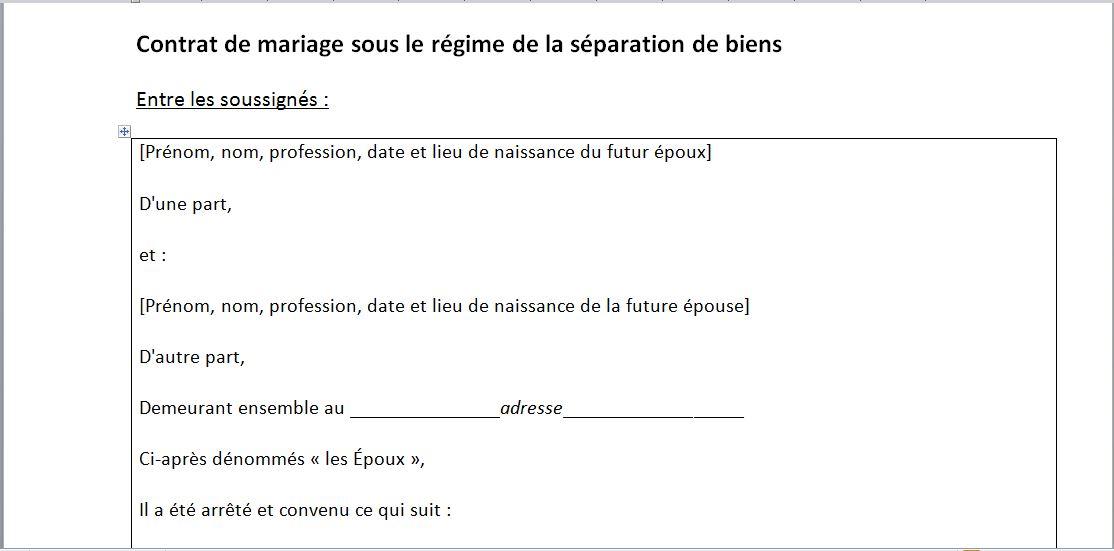 Capture d'écran Modèle de contrat de mariage