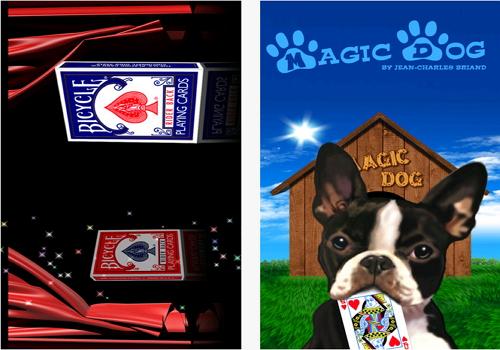 Capture d'écran Magic Collectricks iOS