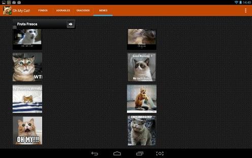 Capture d'écran Fonds d'écran de chat