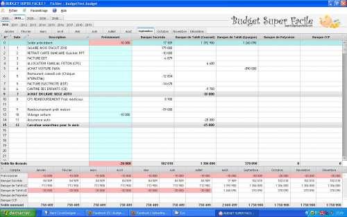 Capture d'écran BudgetSuperFacile