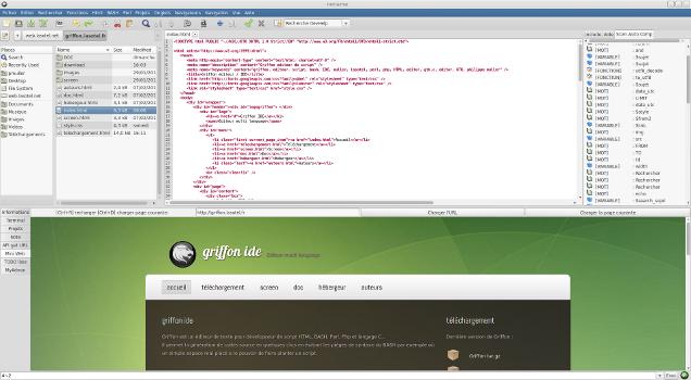 Capture d'écran Griffon IDE