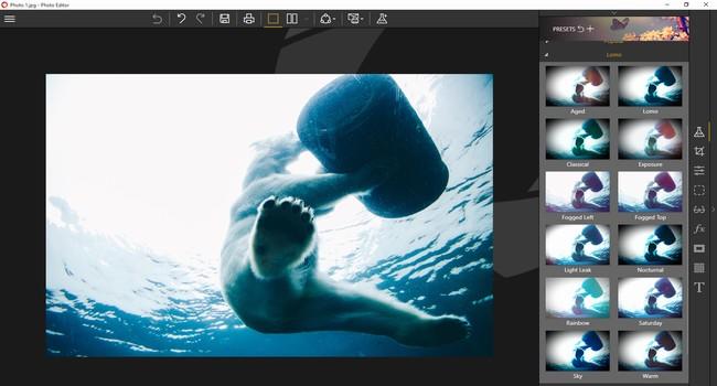 Capture d'écran InPixio Photo Editor Free