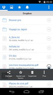 Capture d'écran Dropbox