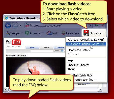 Capture d'écran FlashCatch
