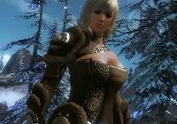Capture d'écran Guild Wars 2