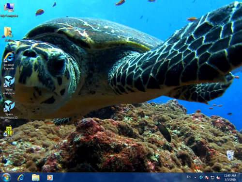 Capture d'écran DreamScene Video Wallpaper