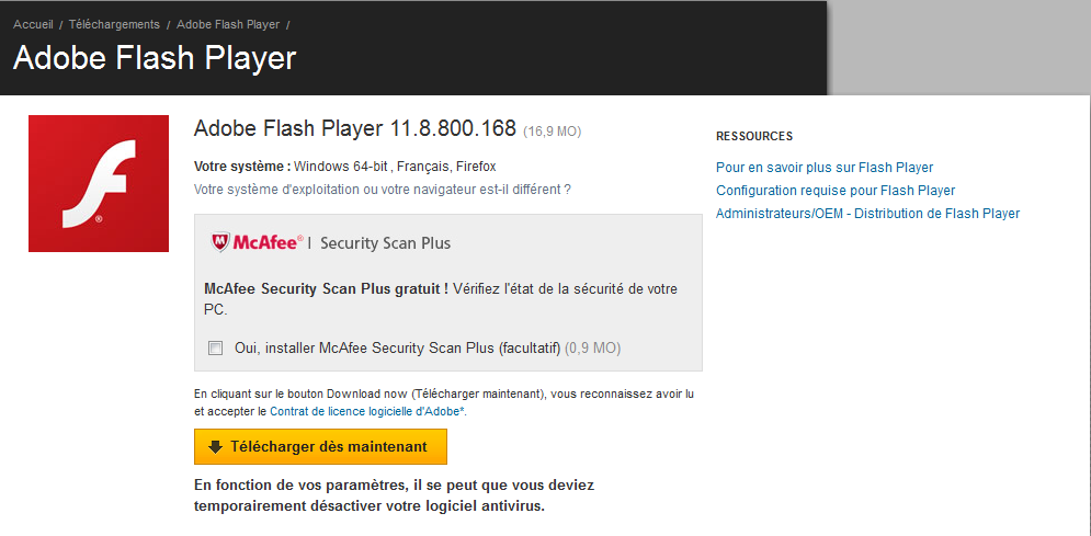 Capture d'écran Flash Player