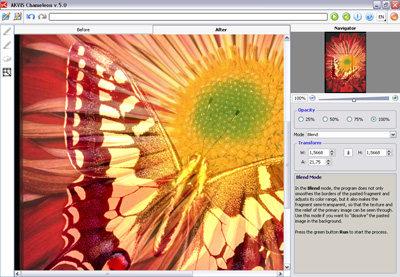 Capture d'écran AKVIS Chameleon
