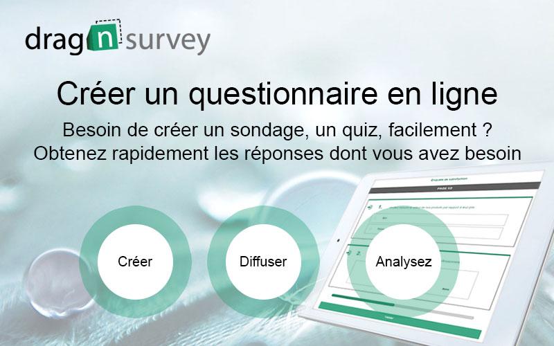 Capture d'écran Drag'n Survey