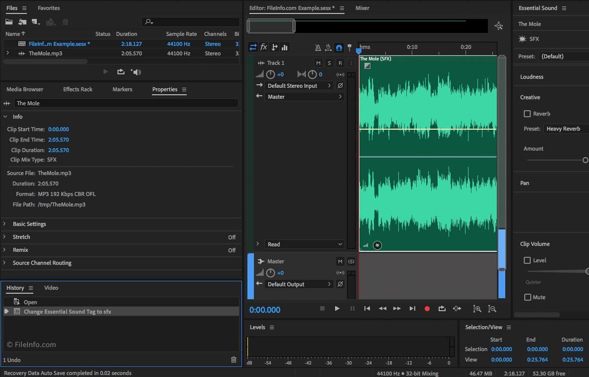 Capture d'écran Adobe Audition CS6