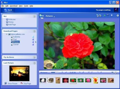 Capture d'écran Nici Picture Downloader