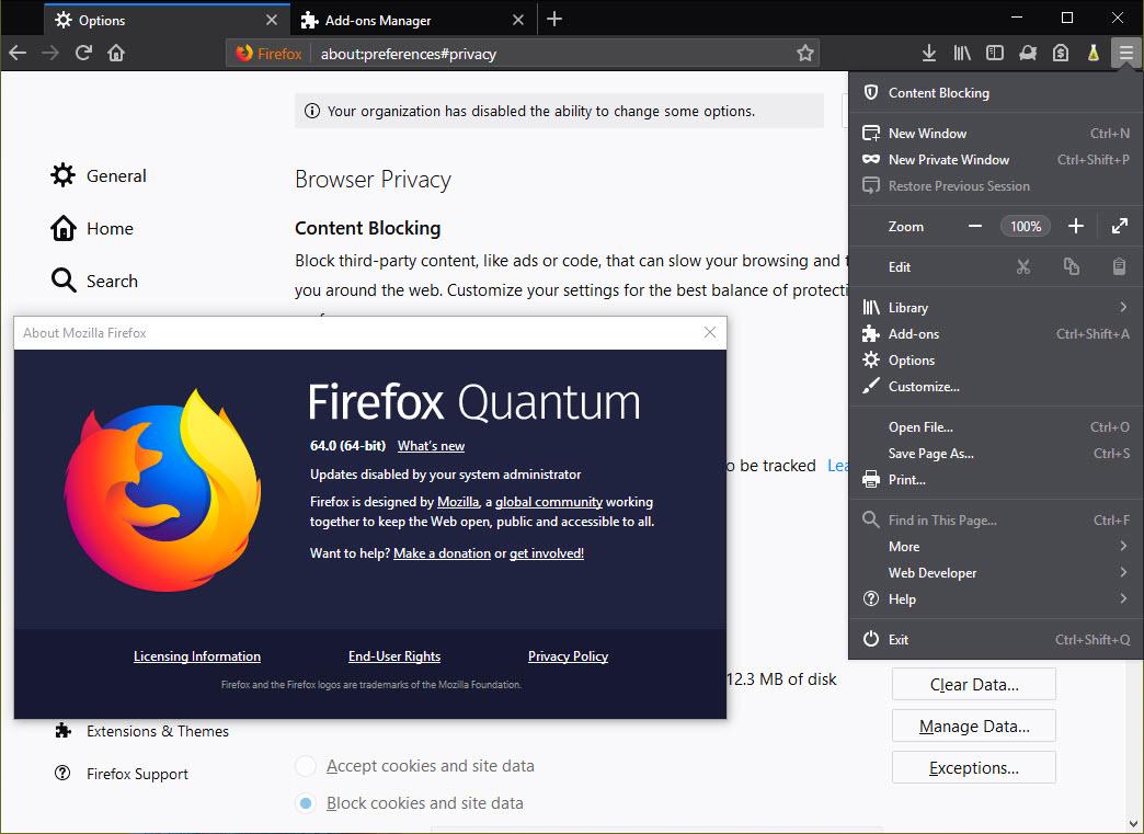 Capture d'écran Librefox Linux