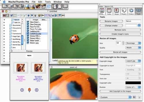 Capture d'écran MuchoThumbs