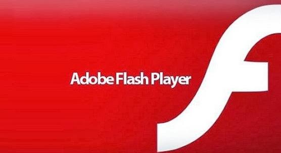 Capture d'écran Flash Player Android