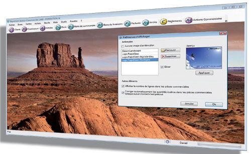 Capture d'écran RapidGest Gestion Commerciale