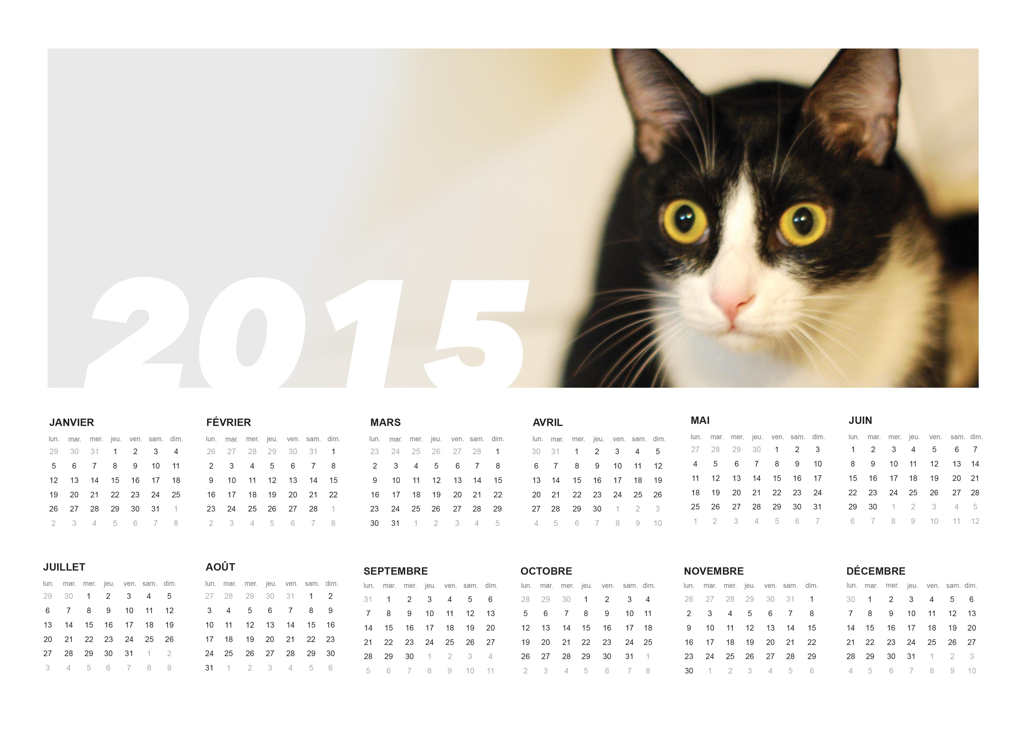 Capture d'écran Calendrier 2015 imprimable