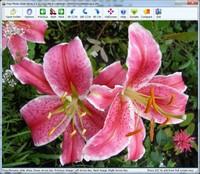 Capture d'écran Free Photo Slide Show