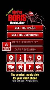 Capture d'écran Magic Spider