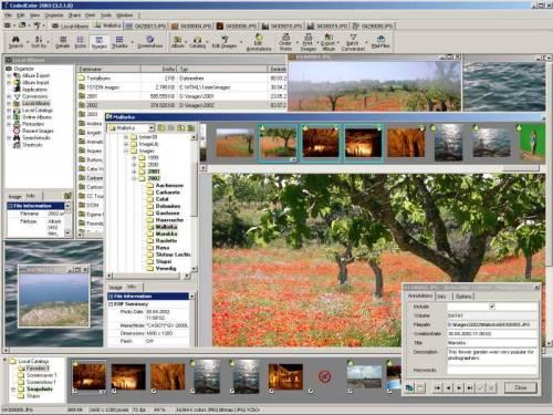 Capture d'écran CodedColor PhotoStudio