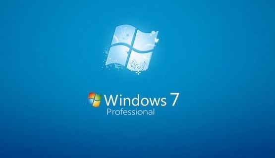 Windows 7 Professionnal