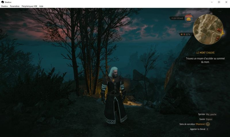 Witcher 3 sur Shadow