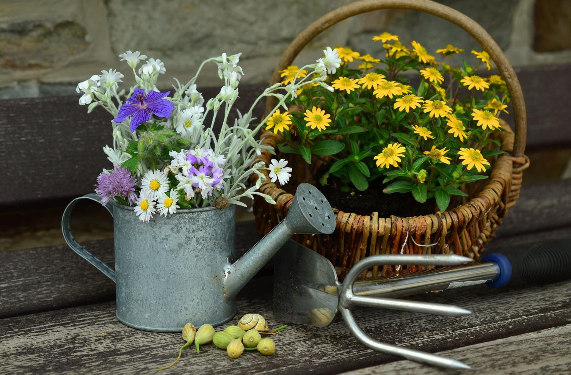 jardin outils fleurs